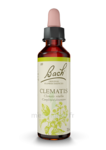 Acheter Fleurs de Bach® Original Clematis - 20 ml à SEYNOD
