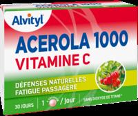 Govital Acerola 1000 à SEYNOD