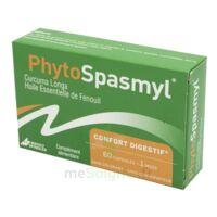 Phytospasmyl Caps B/60 à SEYNOD