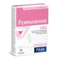 Pileje Feminabiane Cbu 30 Comprimés Bicouches à SEYNOD