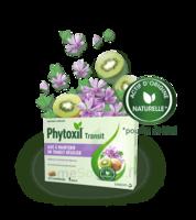 Phytoxil Transit Comprimés B/20 à SEYNOD