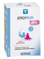 Ergykid Mag Poudre solution buvable 14 Sachets à SEYNOD