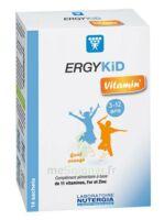 Ergykid Vitamin' Poudre solution buvable 14 Sachets à SEYNOD