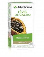 Arkogélules Cacao Gélules Fl/45 à SEYNOD