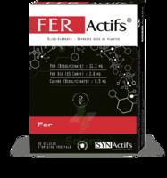 Synactifs Feractifs Gélules B/60 à SEYNOD