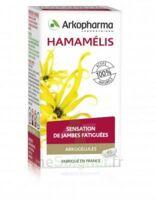 Arkogélules Hamamélis Gélules Fl/45 à SEYNOD