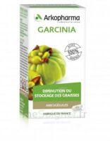 Arkogélules Garcinia Gélules Fl/45 à SEYNOD
