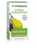 Arkogélules Citrus aurantium Gélules Fl/45 à SEYNOD