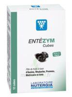 Entezym Cube à mâcher équilibre flore intestinale B/12 à SEYNOD