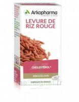 Arkogélules Levure De Riz Rouge Gélules Fl/45 à SEYNOD