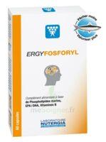 Ergyfosforyl Caps B/60 à SEYNOD