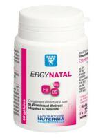 Ergynatal Maternité Gélules B/60 à SEYNOD