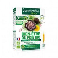 Santarome Bio Bien-être du foie Solution buvable 20 Ampoules/10ml à SEYNOD