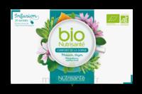 Nutrisanté Infusions Bio Tisane Confort de la gorge 20 Sachets à SEYNOD