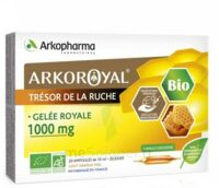 Arkoroyal Gelée royale bio 1000 mg Solution buvable 20 Ampoules/10ml à SEYNOD