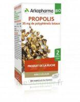 Arkogélules Propolis Bio Gélules Fl/45 à SEYNOD