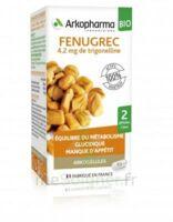Arkogélules Fenugrec Bio Gélules Fl/40 à SEYNOD