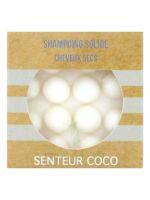 Valdispharm Shampooing solide Coco cheveux secs B/55g à SEYNOD