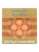 Valdispharm Shampooing solide Mandarine cheveux normaux B/55g à SEYNOD