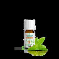 Puressentiel Huiles Essentielles - Hebbd Litsée Citronnée Bio** - 10ml à SEYNOD