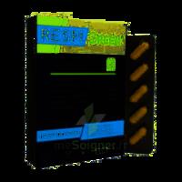 Synactifs Respigreen Bio Gélules B/10 à SEYNOD
