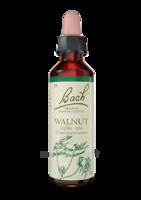Fleurs de Bach® Original Walnut - 20 ml à SEYNOD