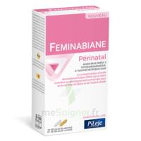 Pileje Feminabiane Périnatal 28 Gélules Blanches Et 28 Gélules Jaunes à SEYNOD