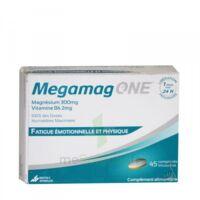 megamag one à SEYNOD