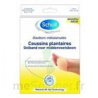 Scholl Coussin Plantaire Douleurs Métatarsales T2 à SEYNOD