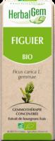 Herbalgem Figuier Macerat Mere Concentre Bio 30 Ml à SEYNOD