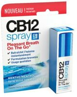 CB 12 Spray haleine fraîche 15ml à SEYNOD