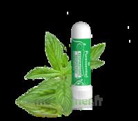 Puressentiel Respiratoire Inhaleur Respiratoire aux 19 Huiles Essentielles - 1 ml à SEYNOD