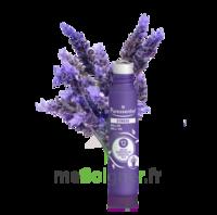 Puressentiel Sommeil - détente Roller Stress aux 12 Huiles Essentielles - 5 ml à SEYNOD