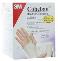 Coheban, Bleu 3 M X 7 Cm à SEYNOD