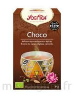 Yogi Tea Chocolat à SEYNOD