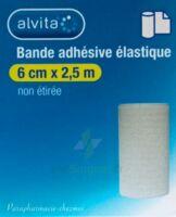 Alvita Bande Adhésive élastique 8cmx2,5m à SEYNOD