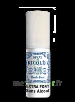Ricqles Spray buccal sans alcool menthe 15ml à SEYNOD