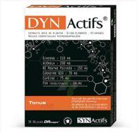 Synactifs Dynactifs Gélules B/30 à SEYNOD