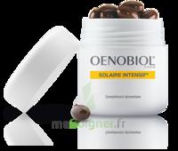 Oenobiol Solaire Intensif Caps Peau Normale Pot/30 à SEYNOD