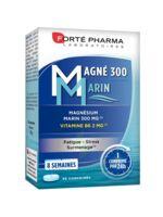 Magné 300 Marin (2 mois) à SEYNOD