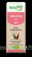 Herbalgem Sinugem Solution Buvable Bio Fl Cpte-gttes/30ml à SEYNOD