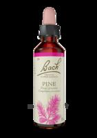 Fleurs de Bach® Original Pine - 20 ml à SEYNOD