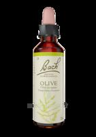 Fleurs de Bach® Original Olive - 20 ml à SEYNOD