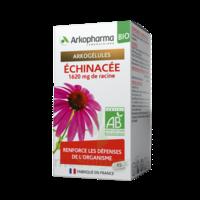 ARKOGELULES Echinacée Bio Gélules Fl/45 à SEYNOD
