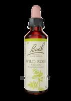 Fleurs de Bach® Original Wild Rose - 20 ml à SEYNOD